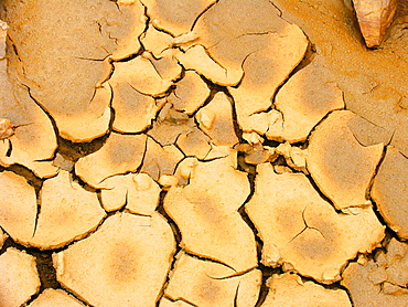 Parched cracked ground.