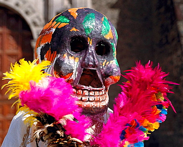 Day of the Dead, Mexico D.F., Mexico - 817-72379