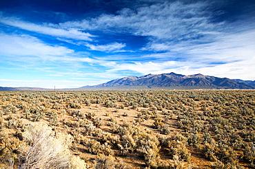 Scrub brush landscape with the Sangre de Christo Mountains, Taos, New Mexico, USA