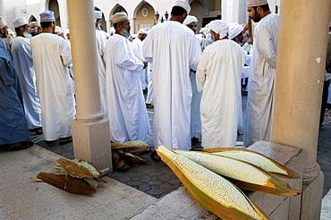 OMAN-Western Hajar Mountains-Nizwa: Omani Farmers at Date Palm Seed Pod Auction at Nizwa Souk