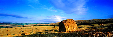 Hay bales, The Cotswolds, Gloucesterhire, UK