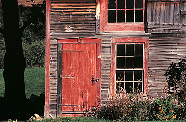 Brown weathered facade of a barn in Vermont, USA showing a red door with peeling paint and windows painted with red trim, a tree trunk is visible of far left