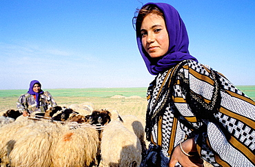 Young shepherd, Qasr Ibn Wardan, Syria