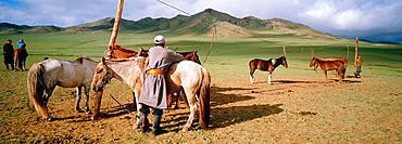 Nomad horsemen, Ovorkhangai province, Mongolia