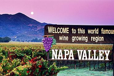 Moonset at dawn over vineyards and Welcome to Napa Valley sign, Napa County, California, USA