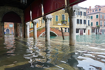Rialto fish market during the high tide in Venice, November 2019, Venice, UNESCO World Heritage Site, Veneto, Italy, Europe