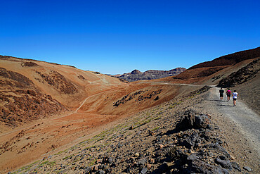 Landscape at Teide National Park, UNESCO World Heritage Site, Tenerife, Canary Islands, Spain, Atlantic, Europe