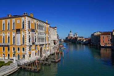 Palazzo Cavalli Franchetti on the Grand Canal of Venice during Coronavirus lockdown, Venice, UNESCO World Heritage Site, Veneto, Italy, Europe