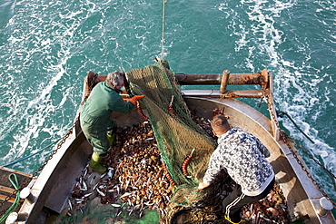 Trawler in the north Adriatic Sea, Chioggia, Venice province, Veneto, Italy, Europe
