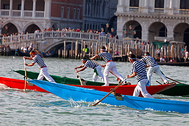 Regata Storica 2012, Venice, UNESCO World Heritage Site, Veneto, Italy, Europe
