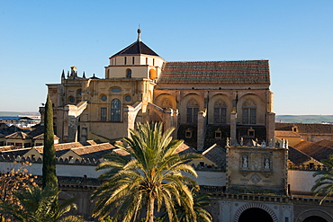 Patio de los Naranjos and the Mezquita Cathedral seen from its bell tower, UNESCO World Heritage Site, Cordoba, Andalucia, Spain, Europe