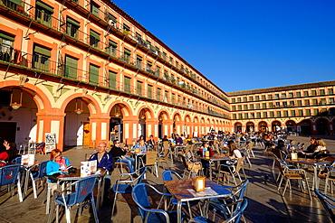 Bars at Plaza de la Corredera, Cordoba, Andalucia, Spain, Europe