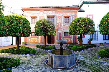 Patio of the Museo de Bellas Artes and Museo Julio Romero de Torres, Cordoba, Andalucia, Spain, Europe