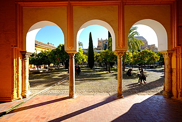 Patio de los Naranjos, Mezquita Cathedral, UNESCO World Heritage Site, Cordoba, Andalucia, Spain, Europe