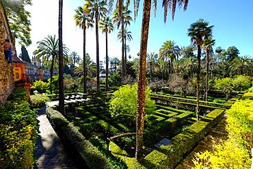 Dance Gardens, Real Alcazar, UNESCO World Heritage  Site, Seville, Andalucia, Spain, Europe