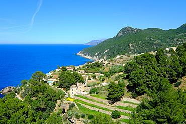 Coastline near Banyalbufar, Serra de Tramuntana, Majorca, Balearic Islands, Spain, Mediterranean, Europe