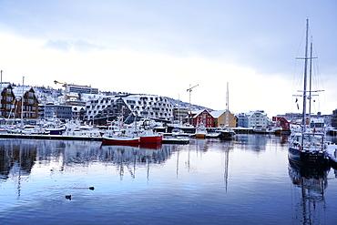 Tromso Harbour, Tromso, Troms County, Norway, Scandinavia, Europe