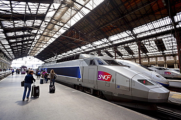 Passengers and TGV high-speed train, Gare de Lyon, Paris, France, Europe