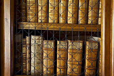 Close-up of books in the Rococo style Abbey Library, containing the oldest library collection in the country, St. Gallen, Switzerland, Europe