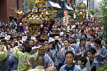 A mikoshi (portable shrine) being carried through the streets during the Sanja Festival in Asakusa, Tokyo, Japan, Asia