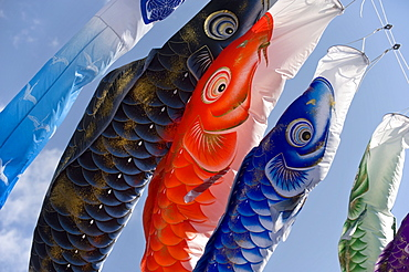 Koinobori, or carp streamers, seen throughout Japan around Children's Day, May 5th, Japan