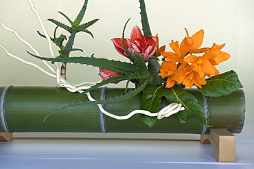 Japanese flower arranging (ikebana) also called the way of flowers (kado), Japan