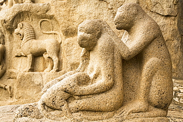 A stone sculpture depicts a group of monkeys grooming close to Arjuna's Penance within the ancient site of Mahabalipuram (Mamallapuram), UNESCO World Heritage Site, Tamil Nadu, India, Asia