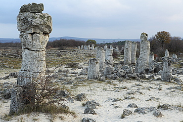 Rock formation at the 50 million year old Stone Forest (Pobiti Kamani), protected national monument, in Varna Province, Bulgaria, Europe
