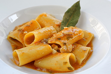 Tubes of southern Italian paccheri pasta served with a tomato sauce and pieces of scorpion fish in Monopoli, Apulia, Italy, Europe