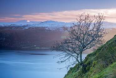 Derwentwater from Cat Bells, Lake District National Park, Cumbria, England, United Kingdom, Europe