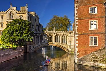 Punting on River Cam, St. John's College, Bridge of Sighs, Cambridge, Cambridgeshire, England, United Kingdom, Europe