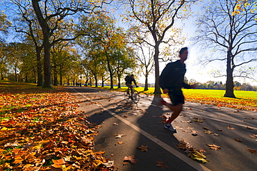 Hyde Park in autumn, London, England, United Kingdom, Europe