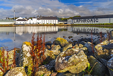 Laphroaig Whisky Distillery, Loch Laphroaig, Islay, Argyll and Bute, Scotland, United Kingdom, Europe
