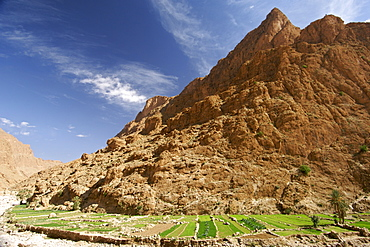 Plantations and dry river bed in the Todra Gorge near Tinehir in the High Atlas mountains of Morocco