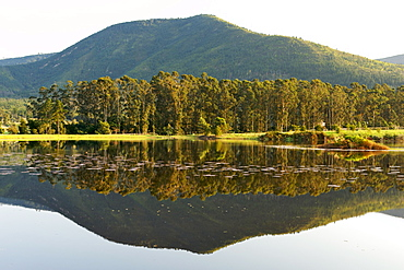 View across the lake of the Kurland polo estate and hotel in Plettenberg Bay on the Garden Route, Western Cape, South Africa, Africa