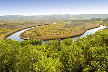 The Bitou River in Plettenberg Bay, seen from the terrace of Emily Moon Lodge, on the Garden Route, Western Cape, South Africa, Africa