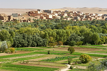 Villages and plantations at the beginning of the Todra Gorge in the vicinity of Tinehir in the High Atlas mountains of Morocco