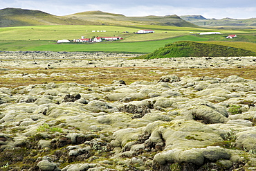 Fields of solidified volcanic lava in the area surrounding Vatnajokull glacier in the southeast, Iceland, Polar Regions