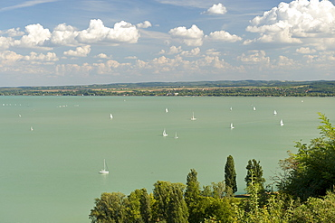 View from Tihany of sailing boats on Lake Balaton, Hungary, Europe