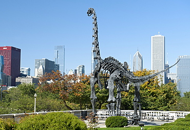 Brachiosaurus sculpture outside the Field Museum of Natural History in Chicago, Illinois, United States of America, North America