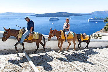 Tourist riding a donkey up the steps leading from the old port to the village of Fira on the Greek island of Santorini, Cyclades, Greek Islands, Greece, Europe