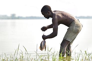 Ugandan man with Tilapia fish at Kasenyi village on the shores of Lake George in western Uganda.