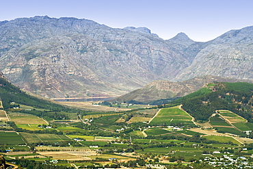 View across the vineyards of the Franschhoek Valley, Western Cape Province, South Africa.