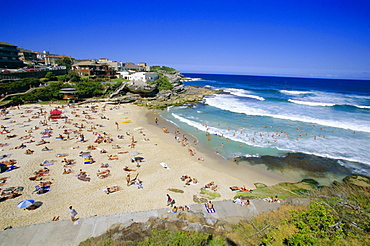Tamarama, fashional beach south of Bondi, Eastern suburbs, Sydney, New South Wales, Australia, Pacific
