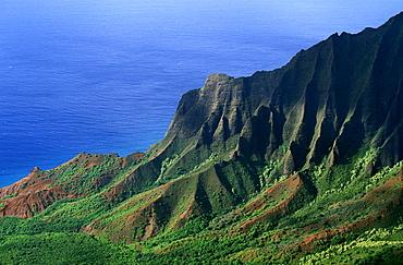 Looking towards the towering seacliffs of the famous NA Pali Coast from the Kokee State Park at the head of Waimea Canyon, Kauai, Hawaii, USA