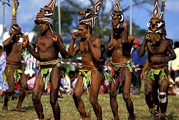 Men from the island of Malekula dancing at a Melanesian cultural festival. Malekula is still very traditional and had cannibalism till 1969, Efate Island, Port Vila, Vanuatu