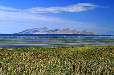 Looking across the Great Salt Lake towards Antelope Island from Great Salt Lake State Park on the south shore near Salt Lake city, Great Salt Lake, Utah, United States of America (USA), North America
