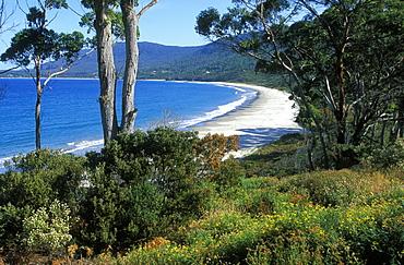 Pirates Bay, Eaglehawk Neck, Port Arthur region, Tasman Peninsula, South East, Tasmania, Australia, Pacific