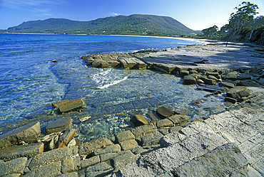 Tessellated Pavement, a wave-cut platform of horizontal strata, north of Pirates Bay, Forestier Peninsula, South East, Tasmania, Australia, Pacific