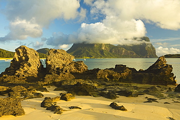 Eroded calcarenite rock (cemented coral sands) with Mount Lidgbird and Mount Gower by the lagoon with the world's most southerly coral reef, on this 10km long volcanic island in the Tasman Sea, Lord Howe Island, UNESCO World Heritage Site, New South Wales, Australia, Pacific